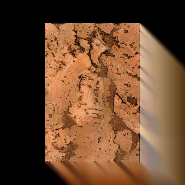 kameleon wandkurk